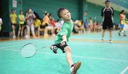 《小球场大名堂》羽毛球技巧篇视频录像合集