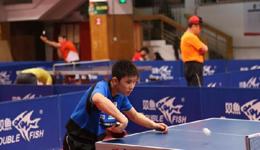 日本乒乓球张本智和近况 日本天才张本智和实力
