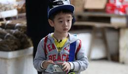 杨威晒儿子训练照 杨阳洋正式进军体操界