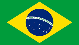 世界杯夺冠最多的国家 世界杯冠军最多的国家巴西