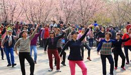 《爱情天堂dj》简单广场舞教学 广场舞教学视频分解慢动作