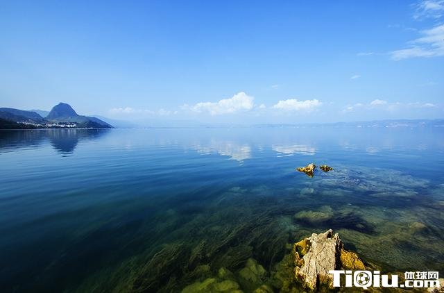 环抚仙湖超马号召生态环保 畅享一路清新呼吸