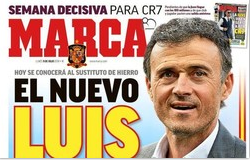 西班牙国家队换主帅 前主帅任职不满一月