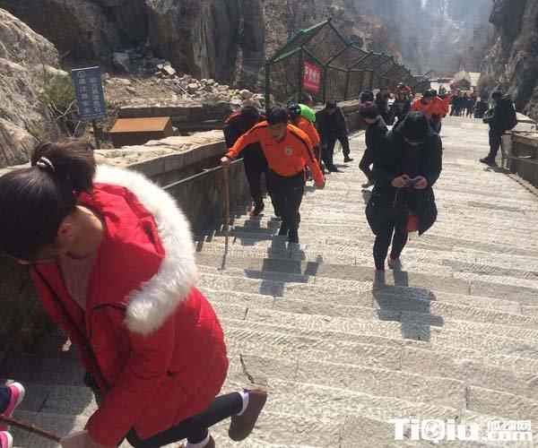 山东鲁能队员登泰山 鲁能教练马加特步行成亮点